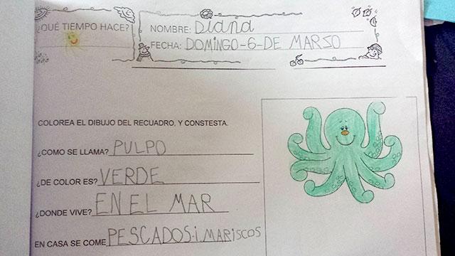 plan-lector-virgen-caridad-villarrobledo-05